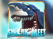 Shark Meet